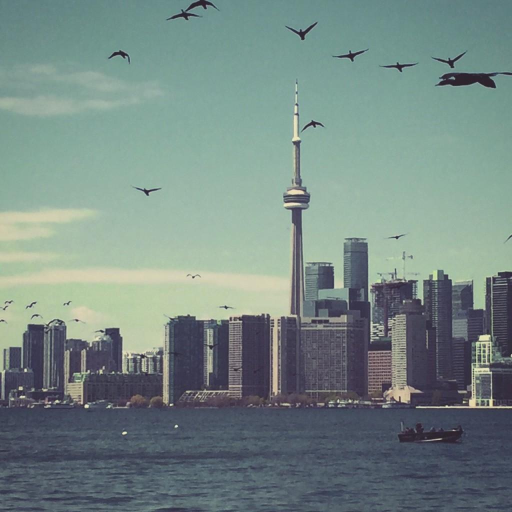 """""""Bird's Eye View"""" auf Toronto_Copyright Sabrina Hasenbein"""