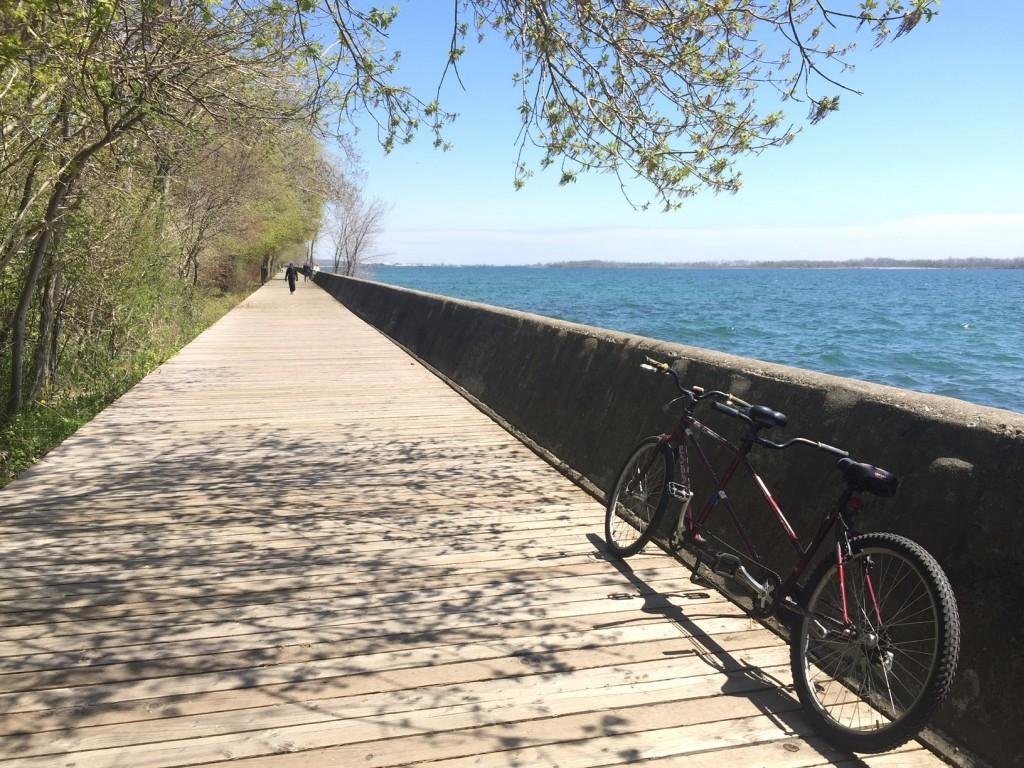 Fahrradwege auf Ward Island_Copyright Sabrina Hasenbein