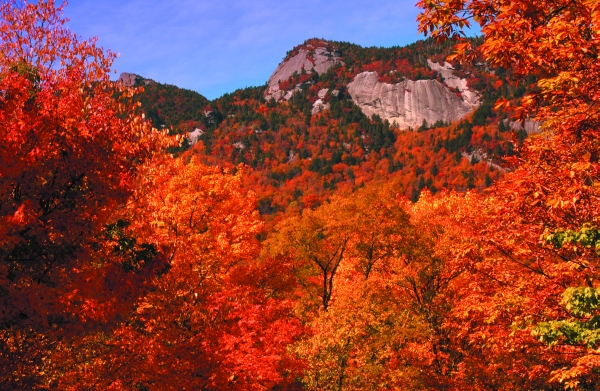 Grandfather Mountain with Fall Color_(C)VisitNC