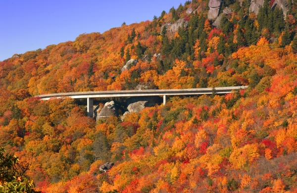 Viaduct Blue Ridge with Fall Color_(C)VisitNC